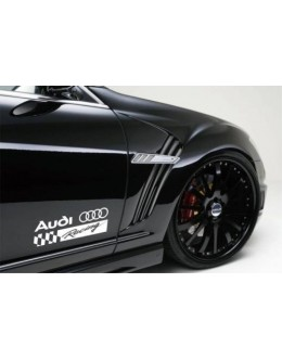2 AUDI RACING A6 A8 Q3 Q5 Q7 TT RS4 RS5 S4 Decal sticker
